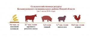 Ресурсы_Большеуковский район