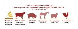 Сельхозресурсы_Большереченский район
