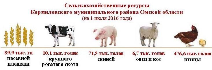 Итоги ВСХП-2016_Кормиловский район_Страница_2