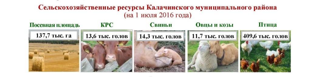 Калачинский район_Страница_2