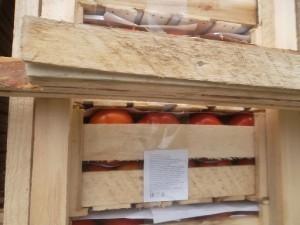 помидоры_коробки_3