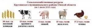 Итоги ВСХП-2016_Крутинский район_Страница_2