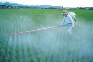 _pesticidy