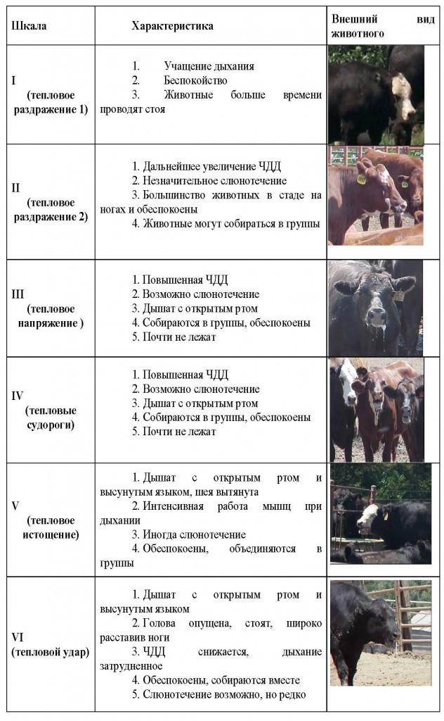 ф БУРЯКОВ_Страница_1