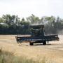 Рост мировых цен на продукты питания в октябре